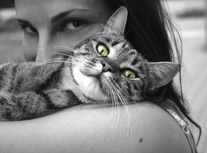 Top Ten Good Things (likecats)